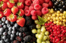 Как отстирать одежду от ягодных пятен?