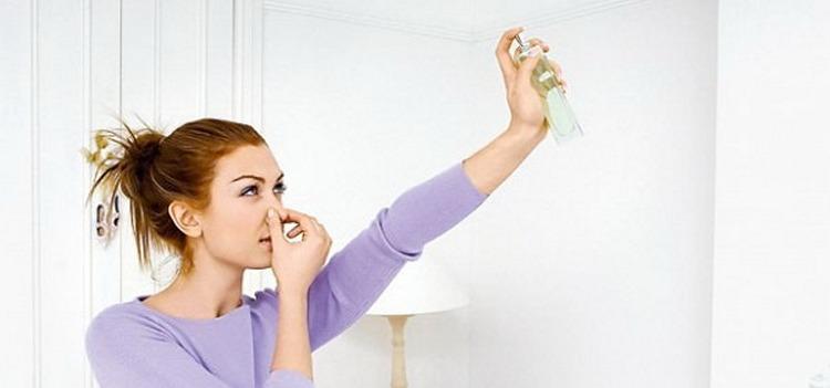 Как сделать так чтобы запах краски выветрился7